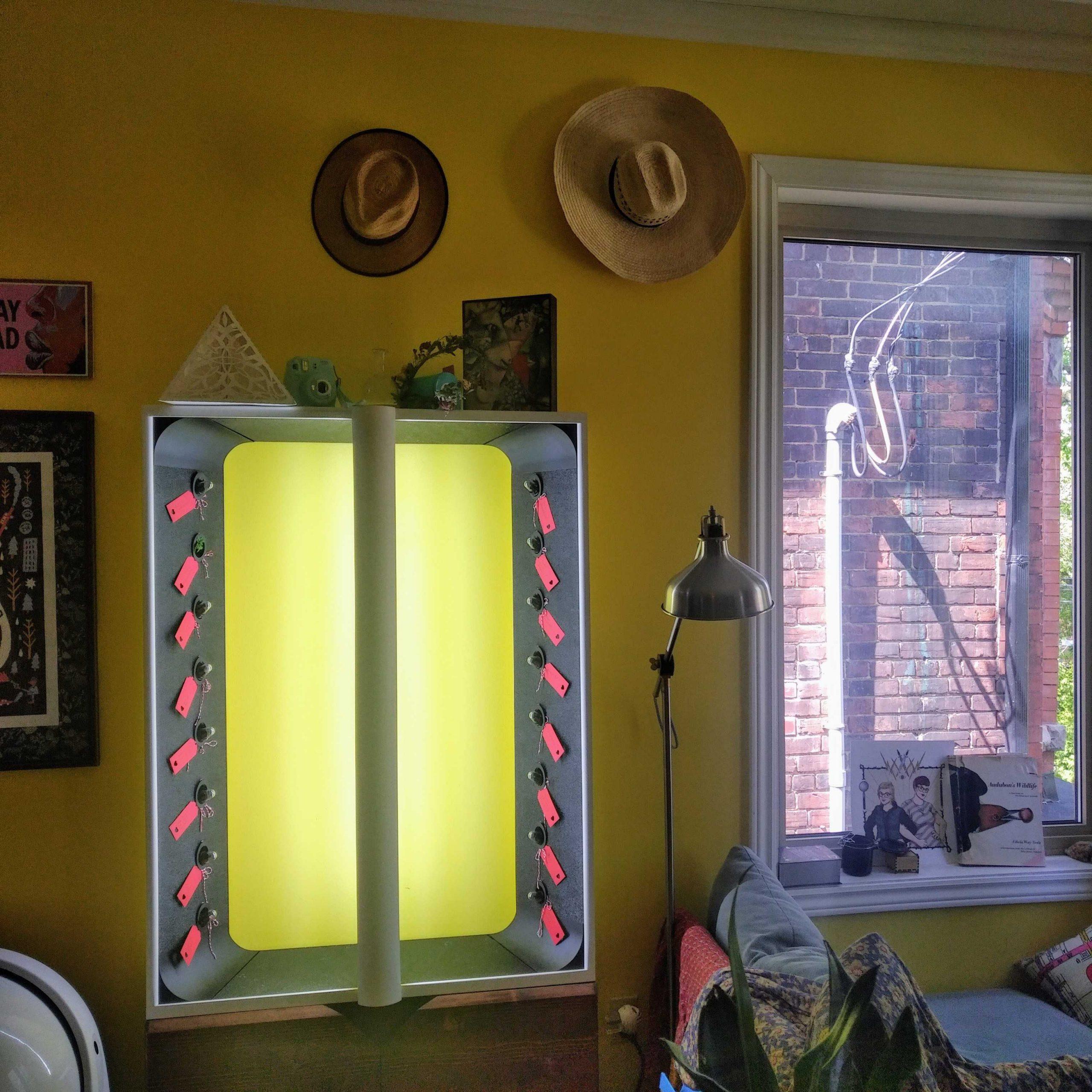Audra's AEVA unit, a vertical indoor garden.