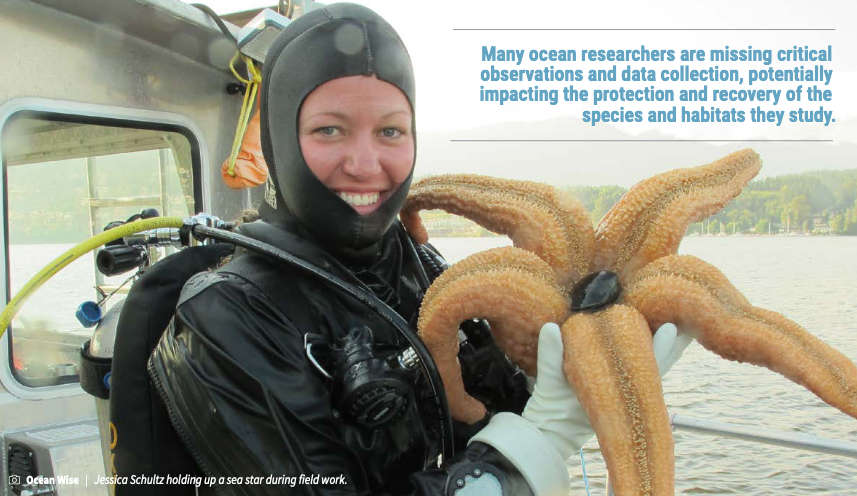 Picture of woman holding a large starfish and smiling