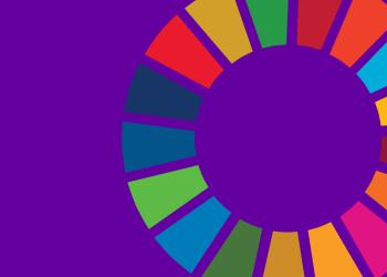 Multi-coloured wheel graphic representing the Sustainable Development Goals.
