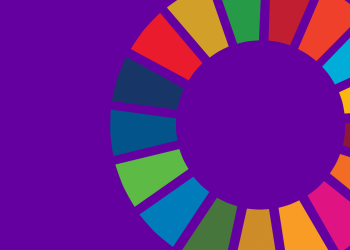 Multi-coloured wheel graphic representing the Sustainable Development Goals.
